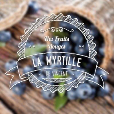 Myrtille arôme naturel VDLV