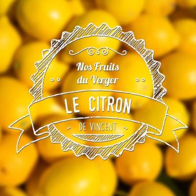 Citron - VDLV